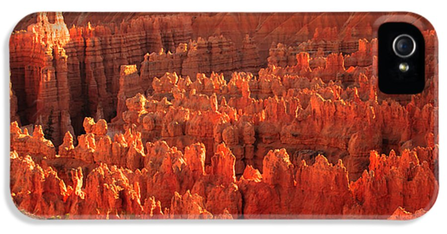 Rock Formations IPhone 5 Case featuring the photograph Hoodoos Basin by Robert Bales