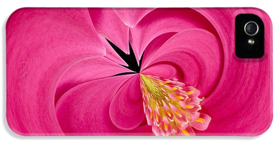 Anne IPhone 5 Case featuring the photograph Hot Pink And Round by Anne Gilbert