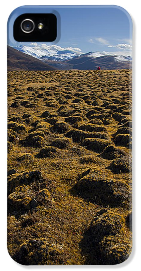 Field IPhone 5 Case featuring the photograph I See Red by Aaron Bedell