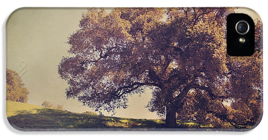 Dry Creek Hills Regional Park IPhone 5 Case featuring the photograph I Wish You Had Meant It by Laurie Search