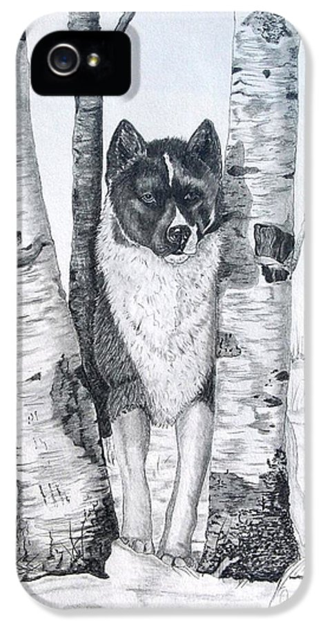 Dog Prints IPhone 5 Case featuring the drawing Ihasa In The Woods by Joette Snyder