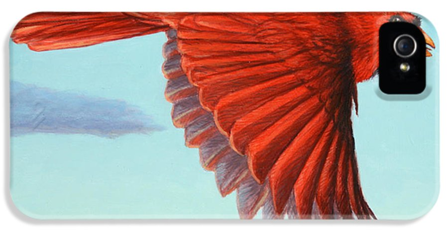 Cardinal IPhone 5 Case featuring the painting In Flight by James W Johnson