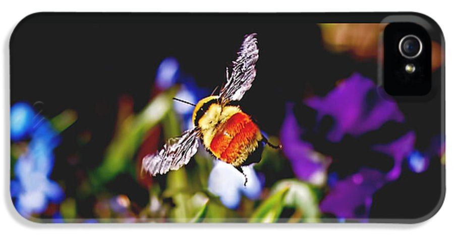 Bee IPhone 5 Case featuring the photograph In Flight by Rona Black