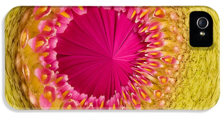 Anne Gilbert IPhone 5 Case featuring the photograph Inner Gerbera by Anne Gilbert