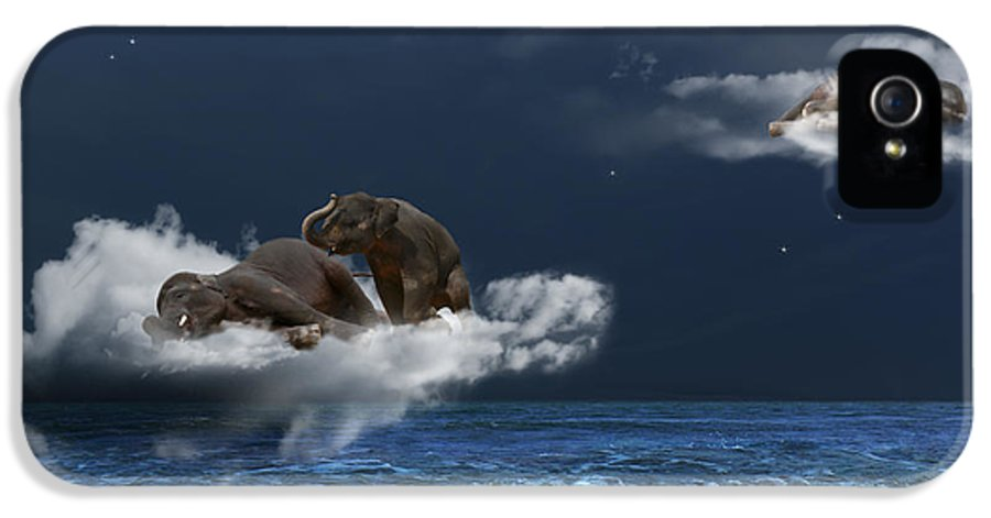 Elephant IPhone 5 Case featuring the photograph Insomnia by Martine Roch