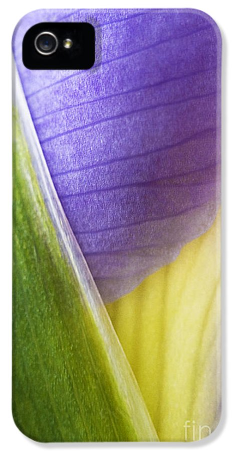 Iris IPhone 5 / 5s Case featuring the photograph Iris Flower Close Up by Natalie Kinnear