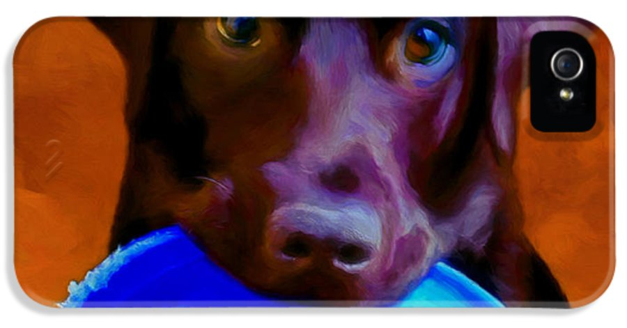 Black Lab IPhone 5 Case featuring the painting Is It Time Yet? by Michael Pickett