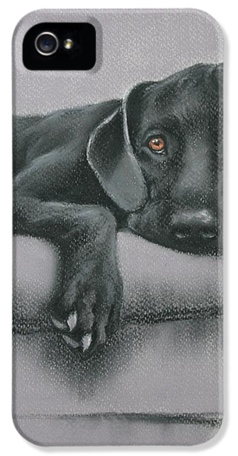 Black IPhone 5 Case featuring the drawing Jasper by Cynthia House