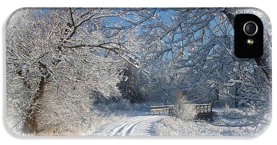 Winter IPhone 5 Case featuring the photograph Journey Into Winter by Teresa Schomig