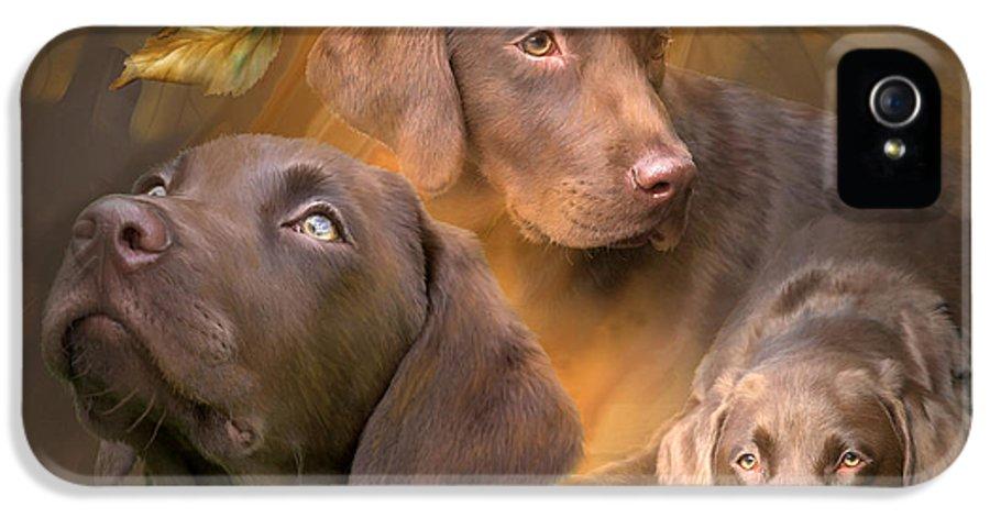 Labrador Retriever IPhone 5 Case featuring the mixed media Lab In Autumn by Carol Cavalaris