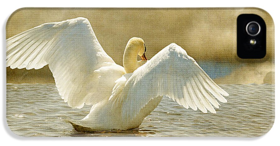 Swans IPhone 5 Case featuring the photograph Lady-in-waiting by Lois Bryan
