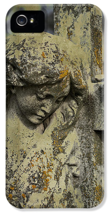 Lean On Me IPhone 5 / 5s Case featuring the photograph Lean On Me by Terry Rowe
