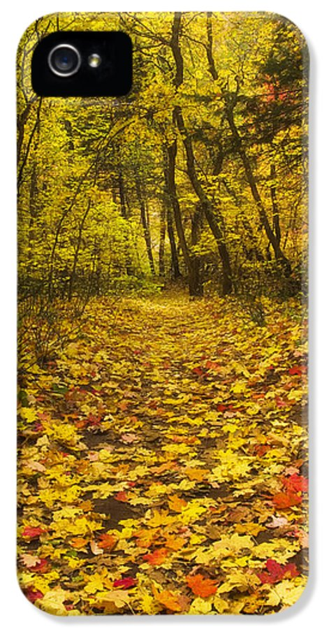 Autumn IPhone 5 Case featuring the photograph Leaving The Way by Peter Coskun