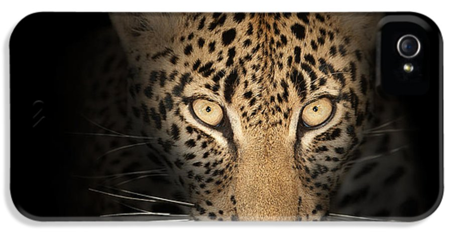 Leopard IPhone 5 Case featuring the photograph Leopard In The Dark by Johan Swanepoel
