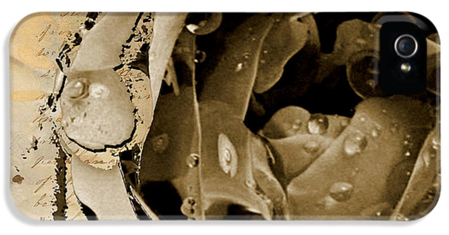 IPhone 5 Case featuring the mixed media Life II by Yanni Theodorou