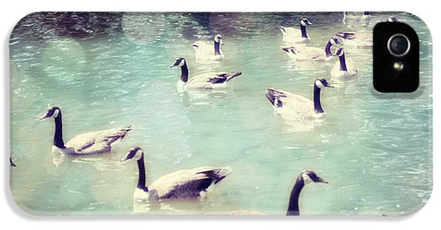 Canadian Geese IPhone 5 Case featuring the photograph Life Is But A Dream by Amy Tyler