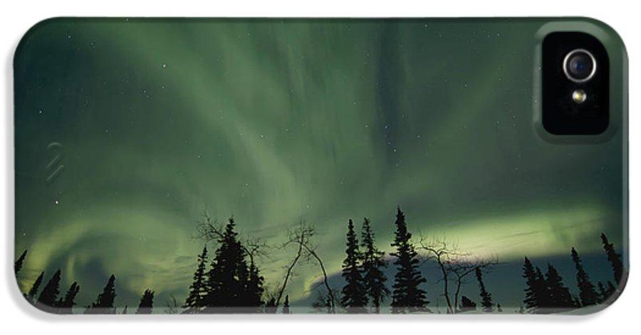 Dawson City IPhone 5 Case featuring the photograph Light Dancers by Priska Wettstein