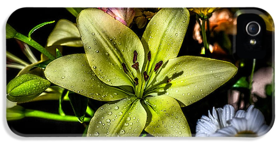 Blossom IPhone 5 / 5s Case featuring the photograph Lily by Adrian Evans