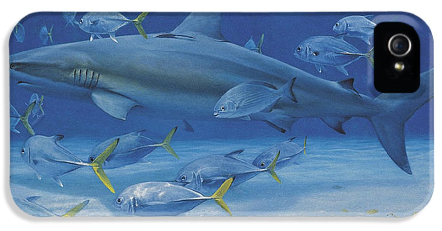 Caribbean Reef Shark IPhone 5 Case featuring the painting Lost Treasures by Randall Scott