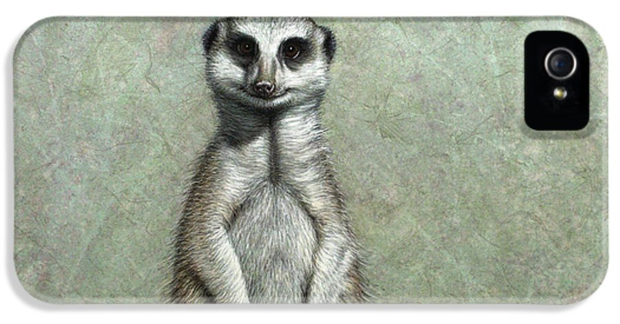 Meerkat IPhone 5 Case featuring the painting Meerkat by James W Johnson