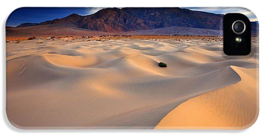 Death Valley IPhone 5 Case featuring the photograph Mesquite Gold by Darren White