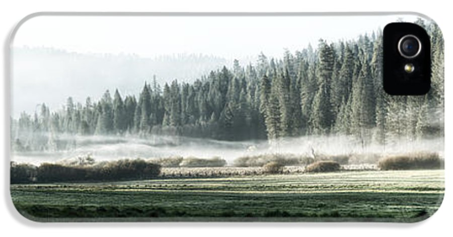Yosemite IPhone 5 Case featuring the photograph Misty Morning In Yosemite by Jane Rix