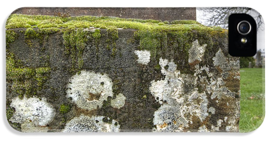 Graf IPhone 5 Case featuring the photograph Moldy Above And Below by Jean Noren
