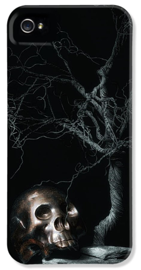Art IPhone 5 Case featuring the photograph Moonlit Skull And Tree Still Life by Tom Mc Nemar