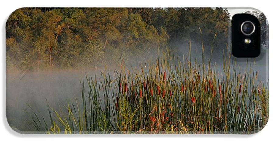 Fog IPhone 5 Case featuring the photograph Morning Glow by Teresa Schomig