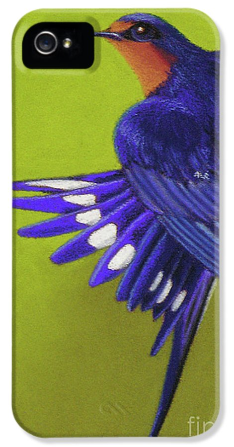 Bird IPhone 5 Case featuring the pastel Morning Ritual Barn Swallow by Tracy L Teeter