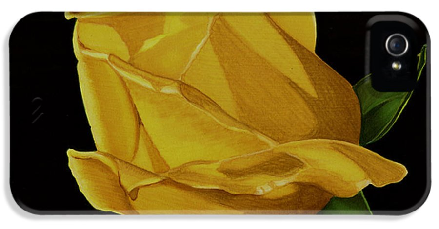 Rose IPhone 5 Case featuring the drawing Mother's Yellow Rose by Cory Still