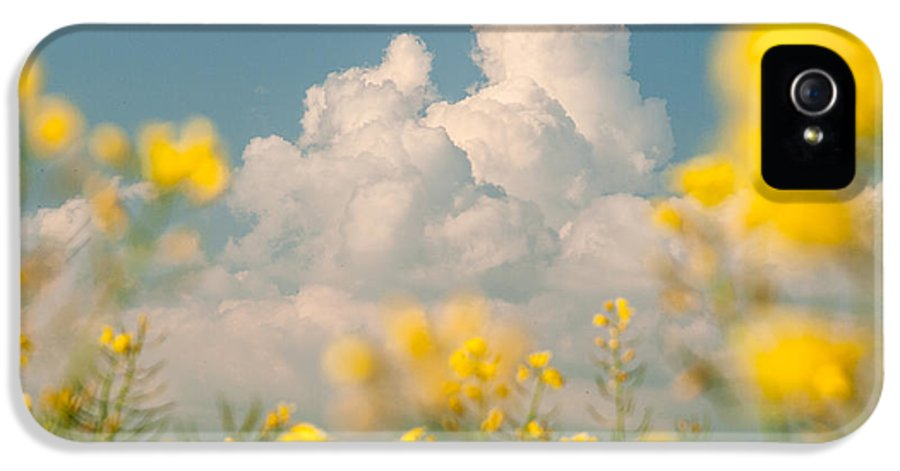 Landscapes IPhone 5 Case featuring the photograph Mt Cloud by Davorin Mance