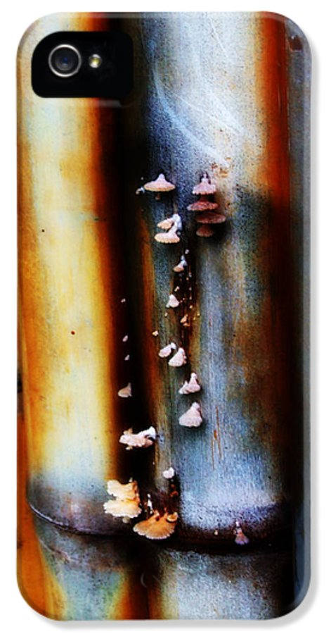 Bamboo IPhone 5 Case featuring the photograph Mushroom On Bamboo 2 by Lyle Barker