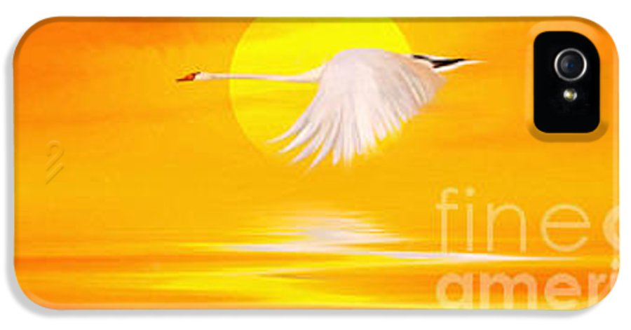 Flying Swan At Sunset IPhone 5 Case featuring the painting Mute Sunset by John Edwards
