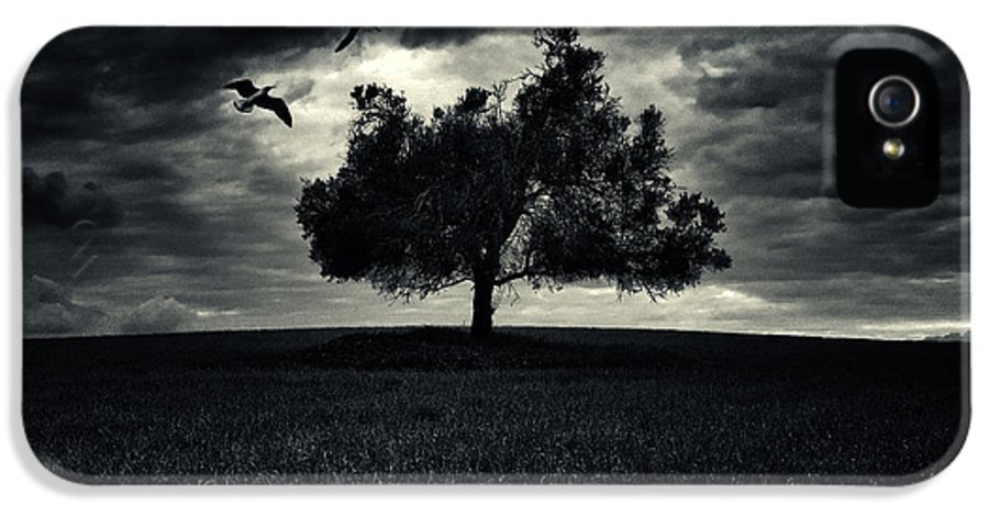 Autumn IPhone 5 Case featuring the photograph My Friends by Stelios Kleanthous