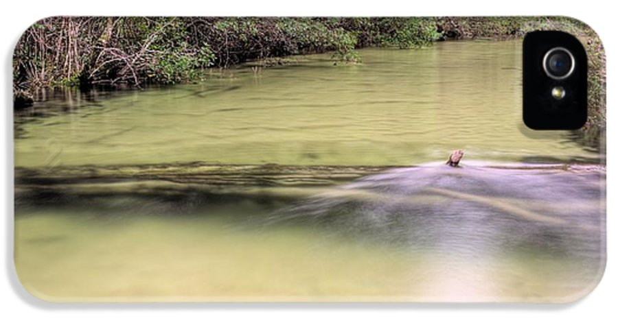 IPhone 5 Case featuring the photograph Natural Florida by JC Findley