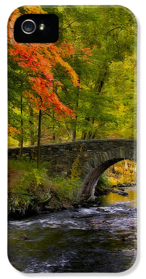 Autumn IPhone 5 Case featuring the photograph Natures Way by Susan Candelario