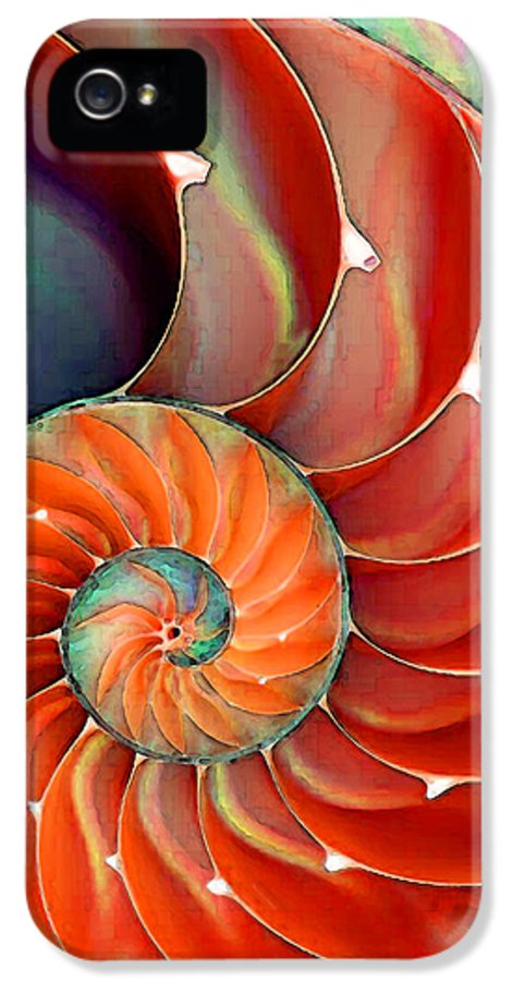 Nautilus IPhone 5 Case featuring the painting Nautilus Shell - Nature's Perfection by Sharon Cummings
