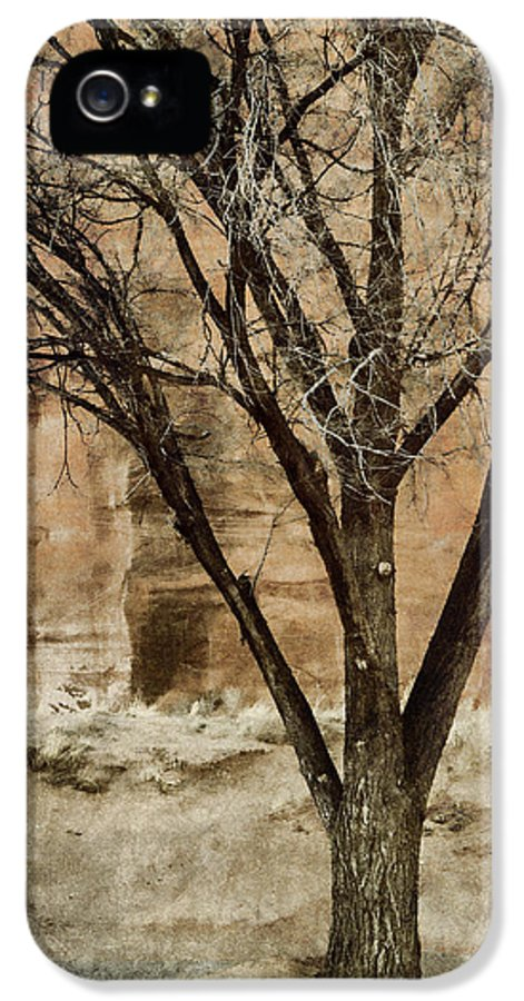 New Mexico IPhone 5 Case featuring the photograph New Mexico Winter by Carol Leigh