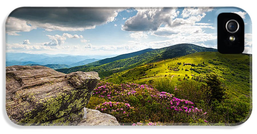 Roan Mountain IPhone 5 Case featuring the photograph North Carolina Blue Ridge Mountains Roan Rhododendron Flowers Nc by Dave Allen