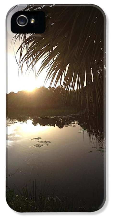 Not Quite Black And White Sunset IPhone 5 Case featuring the photograph Not Quite Black And White - Sunset by K Simmons Luna