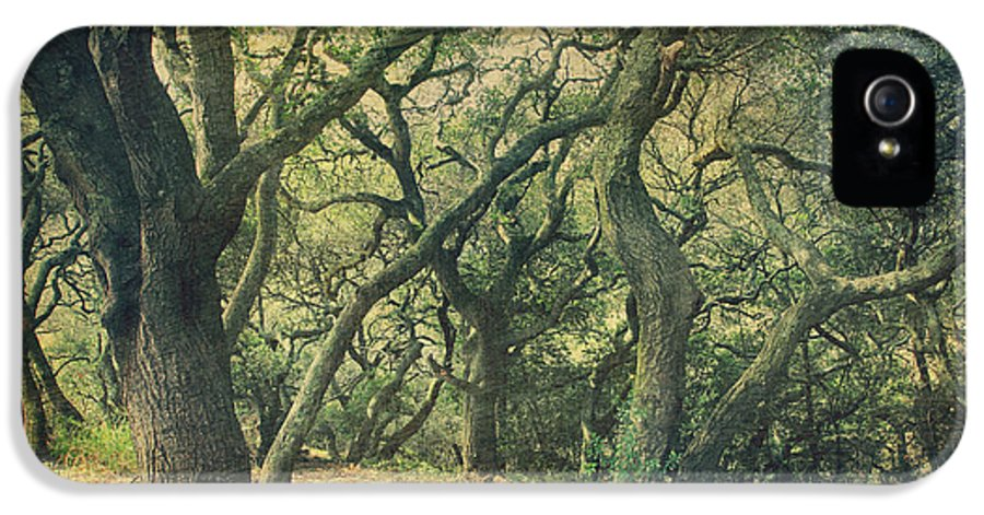 Berkeley Botanical Gardens IPhone 5 Case featuring the photograph Oh How They Danced by Laurie Search