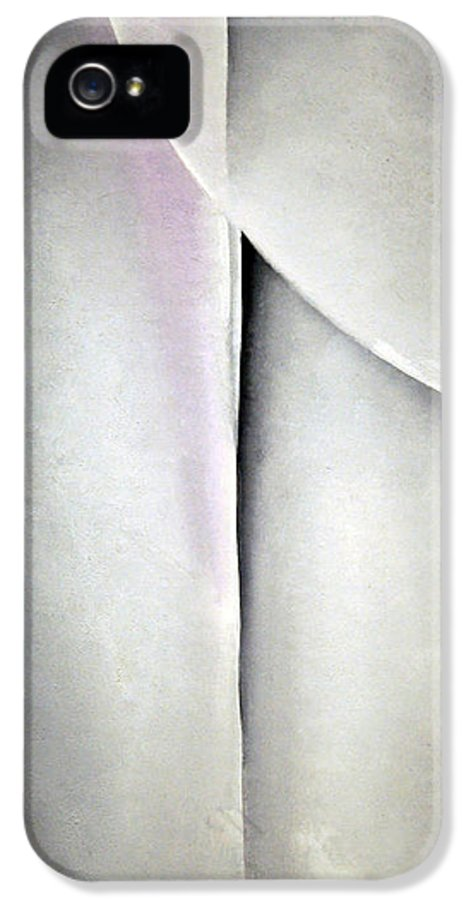 Line And Curve IPhone 5 Case featuring the photograph O'keeffe's Line And Curve by Cora Wandel