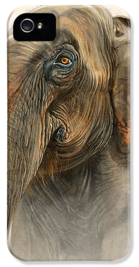 Elephant IPhone 5 / 5s Case featuring the digital art Old Lady Of Nepal 2 by Aaron Blaise