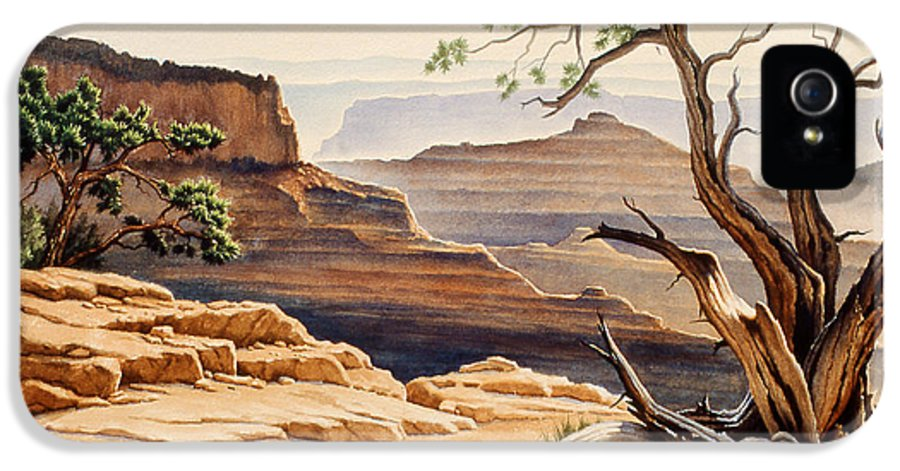 Landscape IPhone 5 Case featuring the painting Old Tree At The Canyon by Paul Krapf