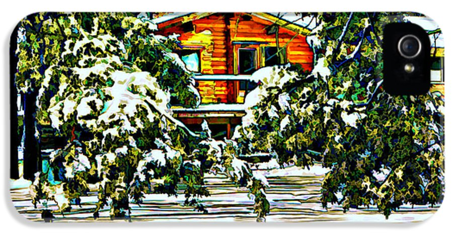 Winter IPhone 5 Case featuring the photograph On A Winter Day by Steve Harrington