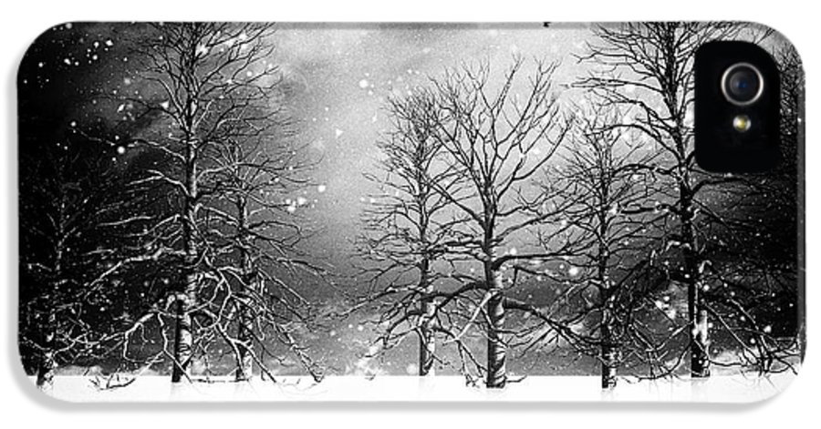 Winter IPhone 5 Case featuring the photograph One Night In November by Bob Orsillo