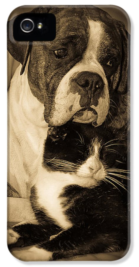 Boxer IPhone 5 Case featuring the photograph Opposites Attract by DigiArt Diaries by Vicky B Fuller