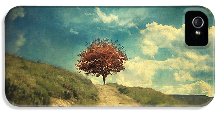 Tree IPhone 5 Case featuring the photograph Other Stories by Taylan Apukovska