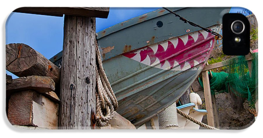 Pacific Ocean IPhone 5 Case featuring the photograph Out Of The Water - There's A Shark by Bill Gallagher